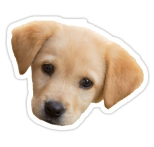A free puppy sticker for every baby.